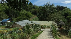Gardens and facilities at the campus of Las Delicias